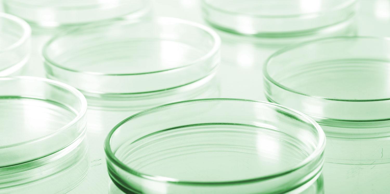 muestras análisis microbiológico